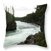 The Bend Throw Pillow