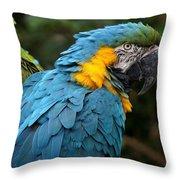 The Blue Throw Pillow