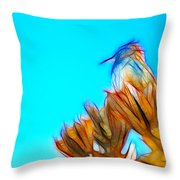 The Cactus Wren Throw Pillow