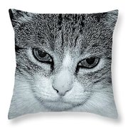 The Cat's Innocense Throw Pillow