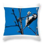 The Chickadee Throw Pillow