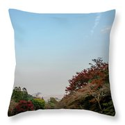 The Creek At The Yoro Waterfall In Gifu, Japan, November, 2016 Throw Pillow