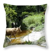 The Crossing 2 Throw Pillow