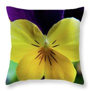 The Face Of A Pansy Throw Pillow