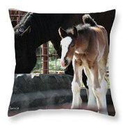 The Flying Colt With The Big White Feet Throw Pillow