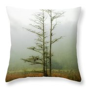 The Foggy Dew Throw Pillow
