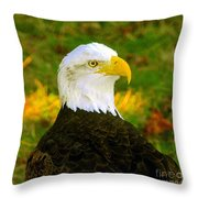The Great Bald Eagle Throw Pillow