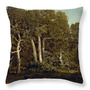 The Great Oaks Of Old Bas-breau Throw Pillow