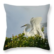 The Light From Above Throw Pillow