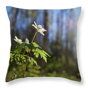 The Morning. Wood Anemone Throw Pillow