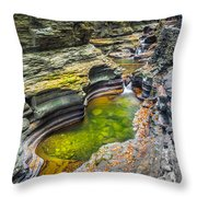 The Narrows Of Watkins Glen Throw Pillow