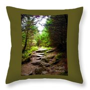 The Path To Righteousness Throw Pillow