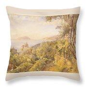 The Priest Garden Throw Pillow