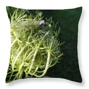 The Queen Is Home Throw Pillow