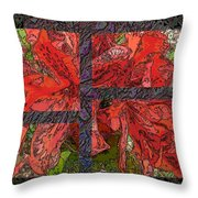 The Rhody 04 Throw Pillow