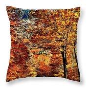 The Richness Of Autumn Treasures Throw Pillow