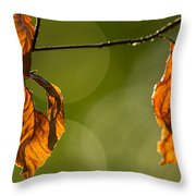 The Secrets Of The Forest Throw Pillow