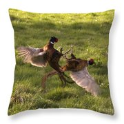 The Sparring Throw Pillow