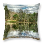 The Spring Pond Throw Pillow