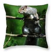 The Squirrel From Fairyland Throw Pillow