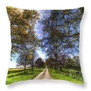 The Summer Farm Track Art Throw Pillow