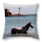 The Swim Throw Pillow