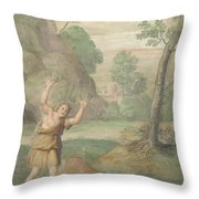 The Transformation Of Cyparissus Throw Pillow