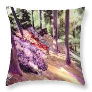 The Upper Pond Throw Pillow