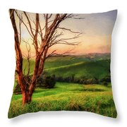 The Valley  Ed1 Throw Pillow