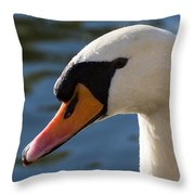 The Watchful Swan Throw Pillow