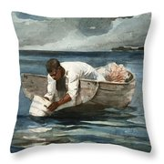 The Water Fan Throw Pillow