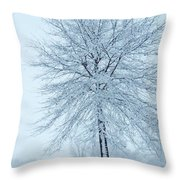 The Winter Tree  Throw Pillow by Lori Frisch