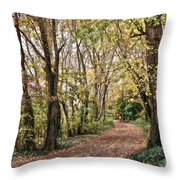 The Woods In Autumn Throw Pillow