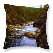 The Yak River Throw Pillow