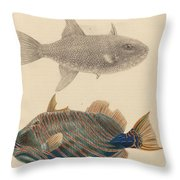 The Zoology Of Captain Throw Pillow