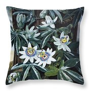 Thornton: Passion-flower Throw Pillow