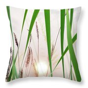 Through The Looking Grass Throw Pillow
