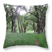 Through The Meadow Throw Pillow