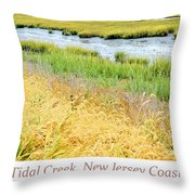 Tidal Creek Mud Flat At Low Tide Throw Pillow