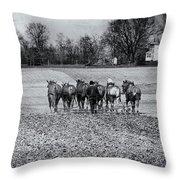 Tilling The Fields Throw Pillow