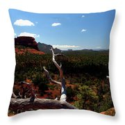 To See Throw Pillow
