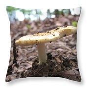 Toad Stool II Throw Pillow