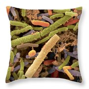Toddlers Feces With Bifidobacteria, Sem Throw Pillow