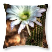 Torch Cactus - Echinopsis Candicans Throw Pillow