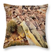 Tracks Of Color In Valley Of Fire Throw Pillow