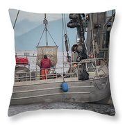 Transfer The Catch Throw Pillow