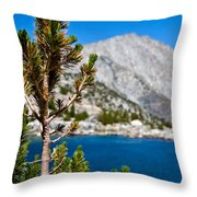 Treasured Pine Throw Pillow