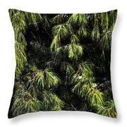 Tree 8 Throw Pillow