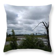Tree In The Wetland Throw Pillow