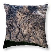 Teton Tree Line  Throw Pillow